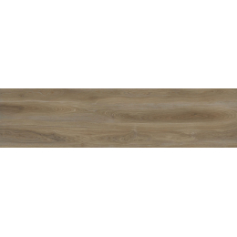 Découvrir Elégance oak 23x120 cm