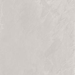 Découvrir Roma bianco 60*60 cm