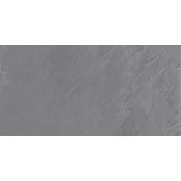 Découvrir Roma 2.0 grigio R11 40*120cm